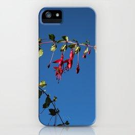 Flower, Hansville, WA iPhone Case