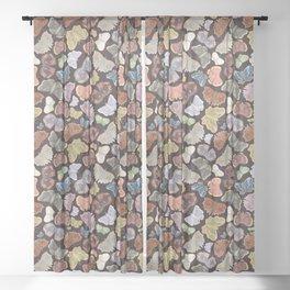 Moths Pattern - Dark Brown Sheer Curtain