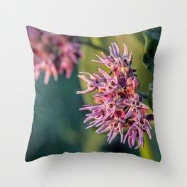 Showy Milkweed Throw Pillow