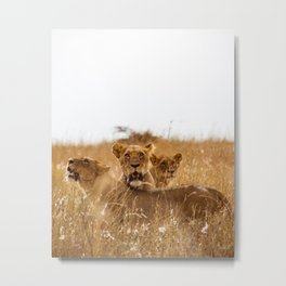 All for One Metal Print