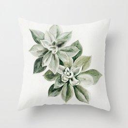Sedum Succulents Throw Pillow