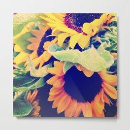 Always Sunny Sunflowers Metal Print