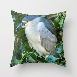 Sleeping Heron Throw Pillow