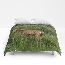 Breakfast At Mesa Verde Comforters
