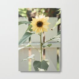the sunflower & the bee Metal Print