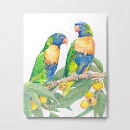 Rainbow Lorikeet Couple - watercolour of Australian parrots Metal Print