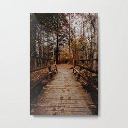 Footprints in the Wilderness Metal Print