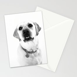 Lucy the Yellow Lab  Stationery Cards