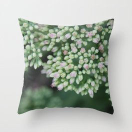 Pastel joy in bloom, flowering plant photography no.4 Throw Pillow