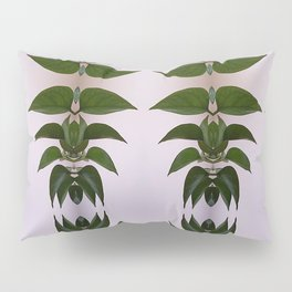 Patterns in Nature Pillow Sham