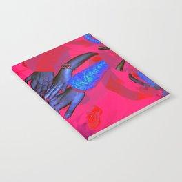 reaching Notebook