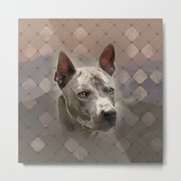 Thai ridgeback dog portrait Metal Print