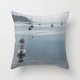 Acadia National Park - Maine Throw Pillow