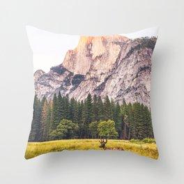 Mountain National Park Throw Pillow