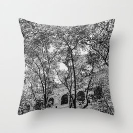 New York Library II Throw Pillow