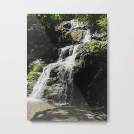Down in the Hollow Metal Print