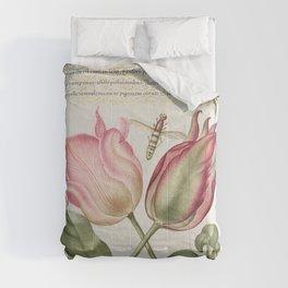 Damselflies Caterpillars Carnation and Poets Jasmine from Mira Calligraphiae Monumenta or The Model Comforters