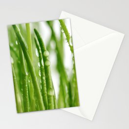 Green gras 03 Stationery Cards