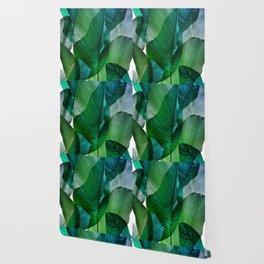 Palm leaf jungle Bali banana palm frond greens Wallpaper