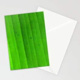 Drops on green leaf Stationery Cards