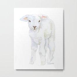 Lamb 2 Watercolor Metal Print