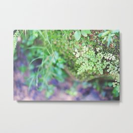 Life in the Undergrowth 02 Metal Print