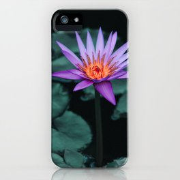 Glowing lotus amongst dark green leaves - Nature Photography Art Print iPhone Case