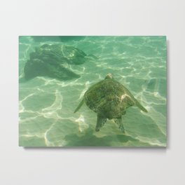 Swimming with the turtle Metal Print