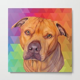 Rainbow puppy Metal Print