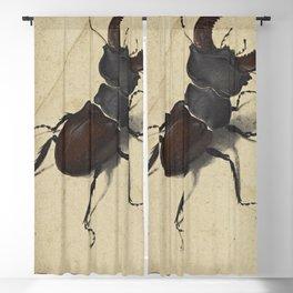 Stag Beetle - Albrecht Durer Blackout Curtain