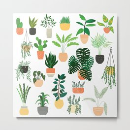 Houseplants 1 Metal Print