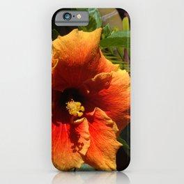 Tropical Orange Hibiscus Flower in Bamboo Garden iPhone Case