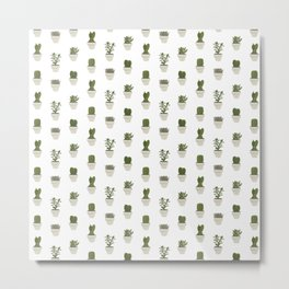 Cacti & Succulents - White Metal Print