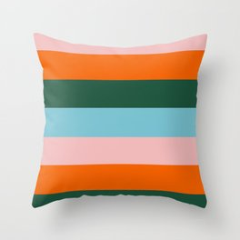 Color Stripe_007 Throw Pillow