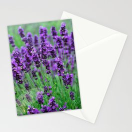 Lavender colors... Stationery Cards