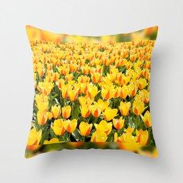 Plenty yellow and red Stresa tulips Throw Pillow