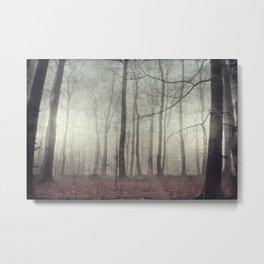 mood scape - mist woodlands Metal Print