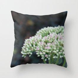 Softnest Against The Dark.  Flower garden photography Throw Pillow
