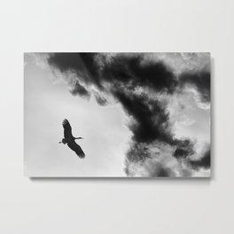 freedom Metal Print