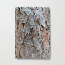 Flaky Tree Bark Metal Print