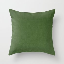 Sage Green Velvet texture Throw Pillow