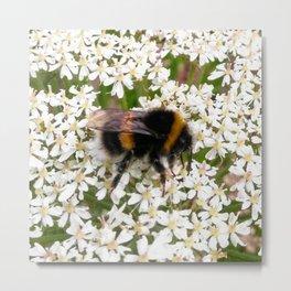 Angelica Bee Metal Print