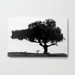 B&W Tanzanian Tree Metal Print