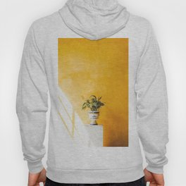 Seville XIII [ Andalusia, Spain ] Flowerpot on yellow background⎪Colorful travel photography Poster Hoody