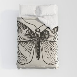 Leaf-rollers from Moths and butterflies of the United States (1900) by Sherman F Denton (1856-1937) Comforters