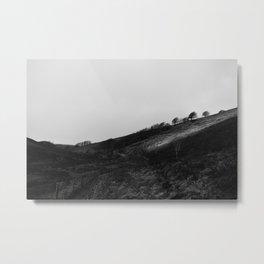 Exmoor II Metal Print