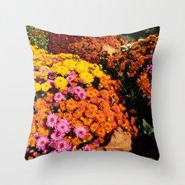 sunburst - 4 Throw Pillow