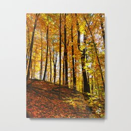 Sunny Autumn Hillside Metal Print