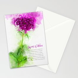 Sweet William Stationery Cards