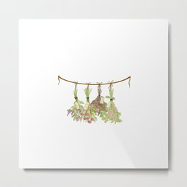 Original Herbs in Pastel Color Metal Print